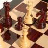 Győr-Moson-Sopron megye 2013. évi sakk bajnokság